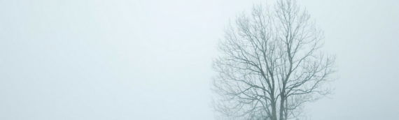 Common Signs of Seasonal Affective Disorder & How to Manage Them